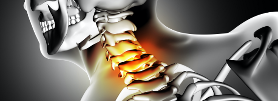 Rachide cervicale - sistema nervoso